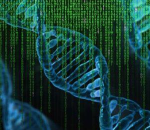 A génszerkesztés kimutatható