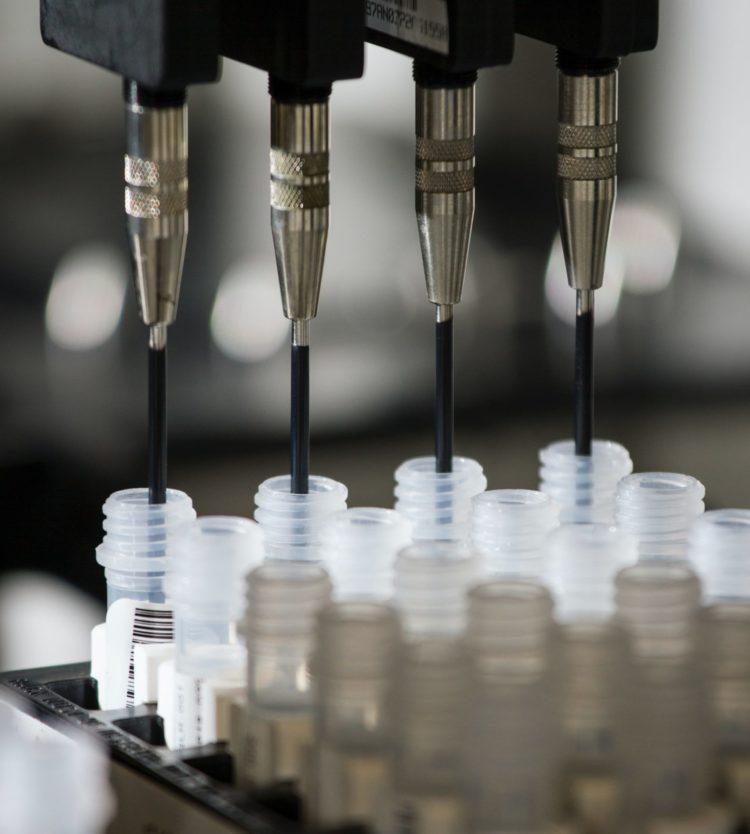 A génszerkesztés is kimutatható – a GMO vita újabb fejezete