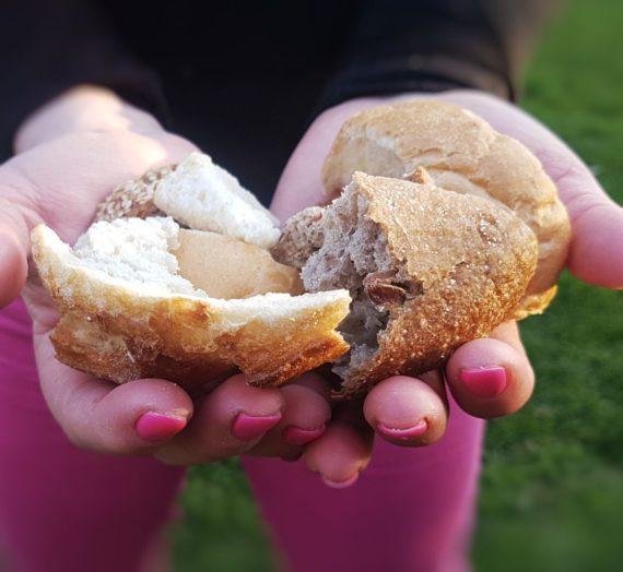 Morzsaközösség – Nincs kidobott kenyér, csak saját zsemlemorzsa!